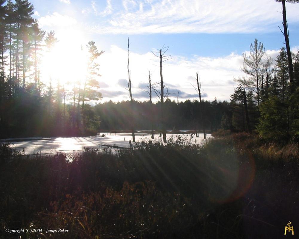 Wilderness Lake 2 - 1280 by odhinnsrunes