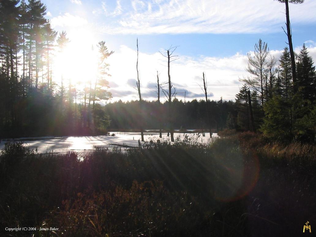 Wilderness Lake 2 by odhinnsrunes