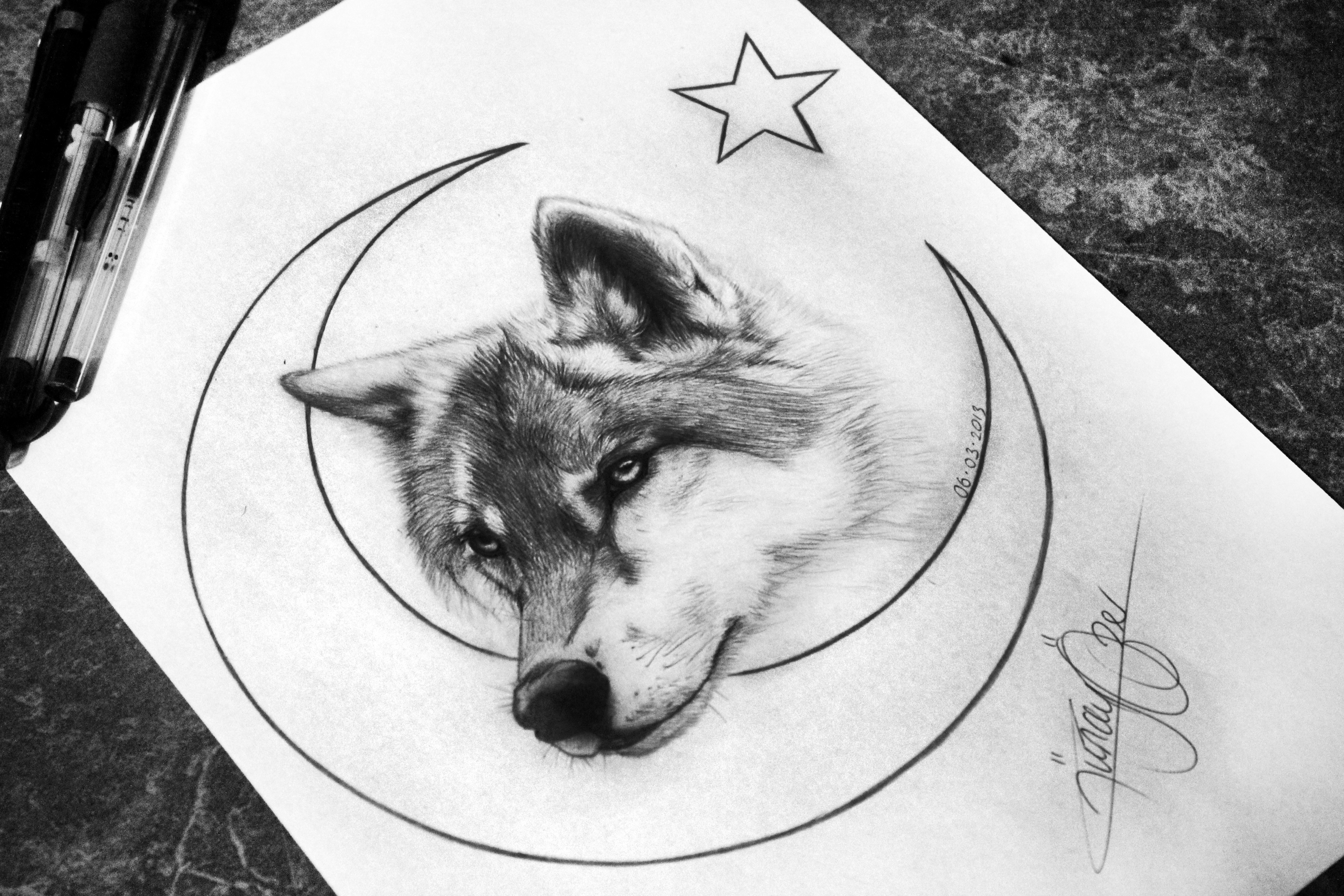 The Lonely Wolf Sketch Turkish Flag Ay Yildiz By