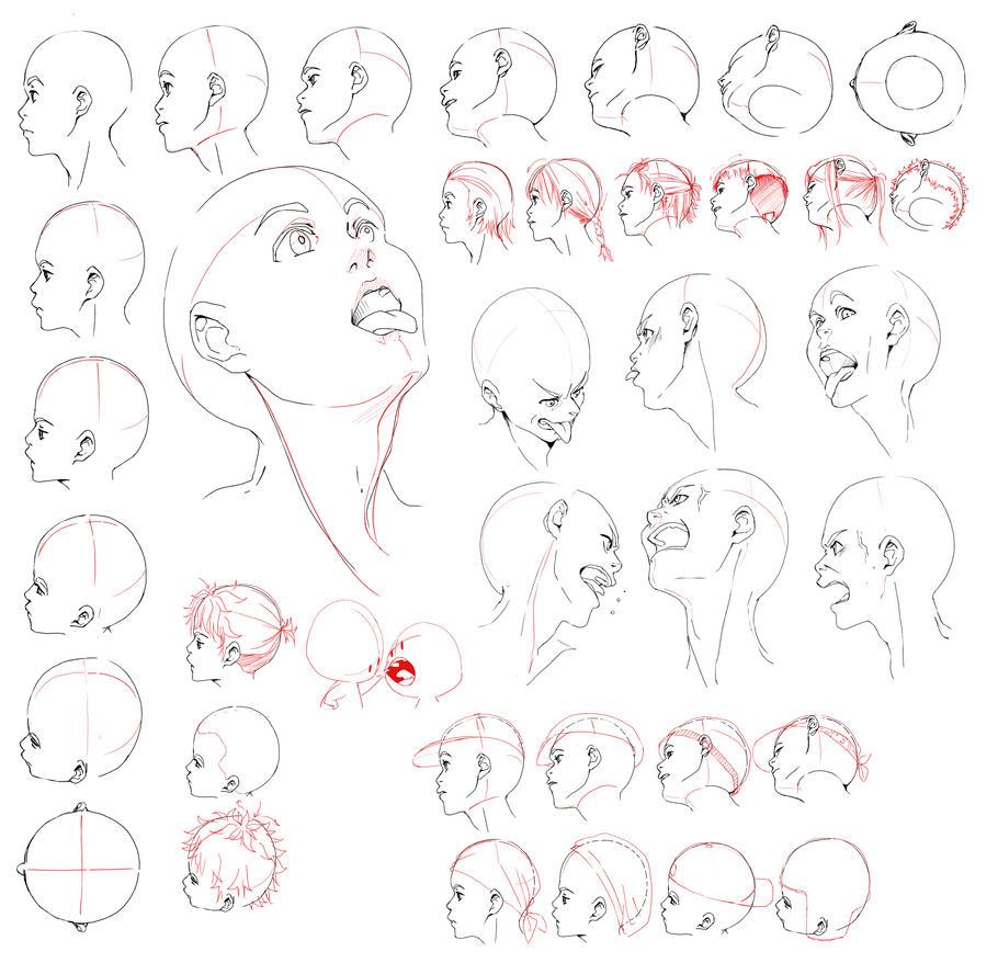 Human Character Design Tutorial : Resources head by deejuusan on deviantart