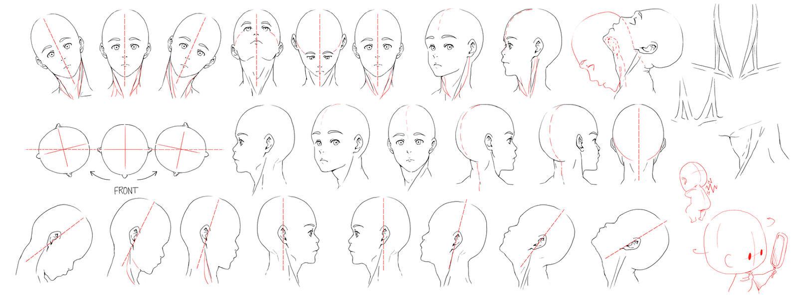Neckline Drawing : Resources head neck by deejuusan on deviantart