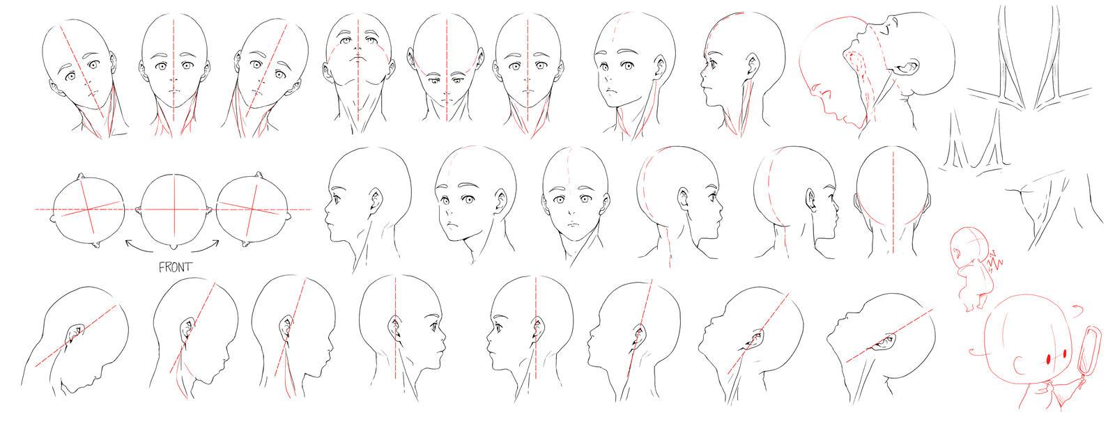 Resources: Head-Neck 1