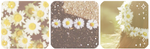 Pushing Daisies | Deco Divider by TheCandyCoating