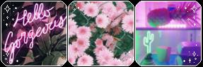 Condica de prezenta - Page 27 Green_and_pink___deco_divider_by_thecandycoating_dau4dsr-fullview.png?token=eyJ0eXAiOiJKV1QiLCJhbGciOiJIUzI1NiJ9.eyJzdWIiOiJ1cm46YXBwOiIsImlzcyI6InVybjphcHA6Iiwib2JqIjpbW3siaGVpZ2h0IjoiPD05NSIsInBhdGgiOiJcL2ZcLzk4NjVhMjViLTNkY2YtNDA3Ni1hZDYxLWIxZTdhNmEzMTk4MFwvZGF1NGRzci02MzM5MTQzZS00YzU4LTQ2YzItYjczMS00NDdlNzdkYzM0N2EucG5nIiwid2lkdGgiOiI8PTI4NyJ9XV0sImF1ZCI6WyJ1cm46c2VydmljZTppbWFnZS5vcGVyYXRpb25zIl19