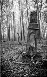 Cmentarz3 by wapel