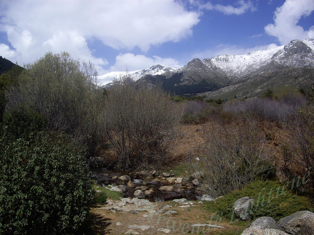 stream in the mountains - photo #26
