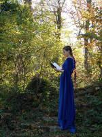 Rivendell elf cosplay -  nature shoot II