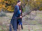 Elven ranger cosplay IV