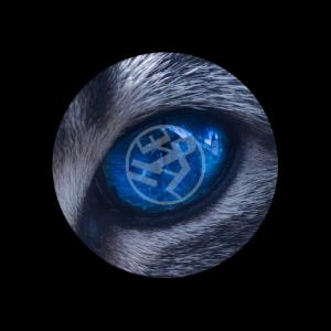 neoelph's Profile Picture