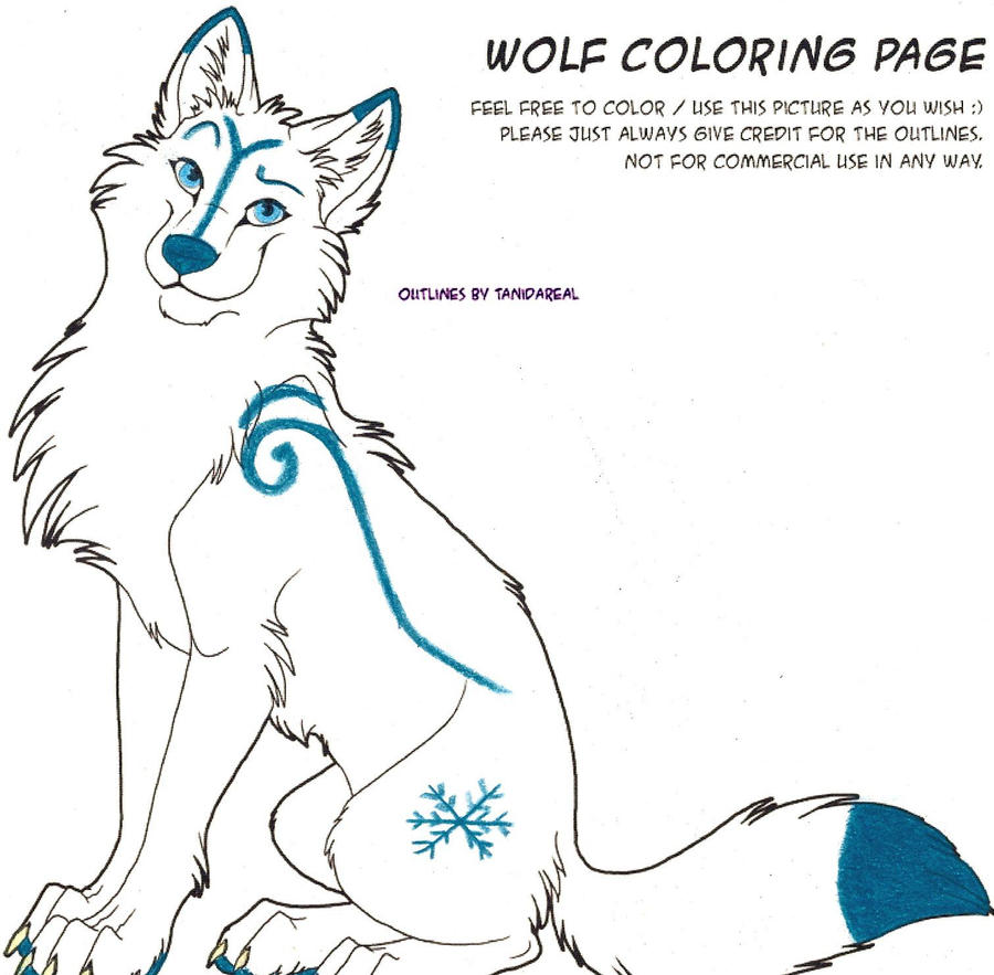 how to draw a arctic wolf