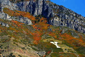 Y Mountain in the Autumn by Delta406
