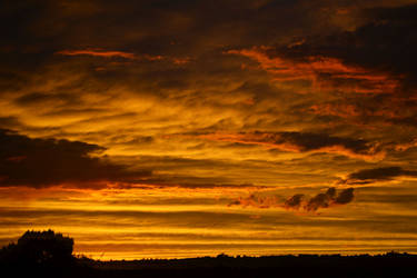 Gold Fire Tonight by Delta406