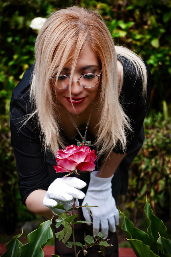 Kiss from a bloody rose