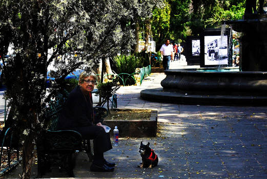 ROMA 2019-5 Lady and her dog