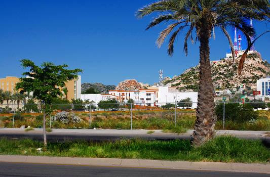 Hermosillo city I