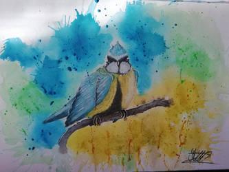 Blue Tit by Kanarialintu1