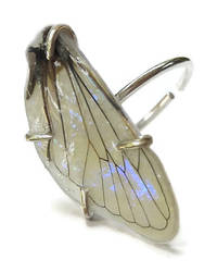 Mother of Pearl Fairy Wing Ring by KristenJarvisART