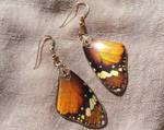 African Monarch Butterfly Wing Earrings