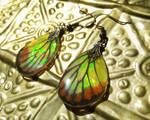 Painted Jezebel Butterfly Wing Earrings