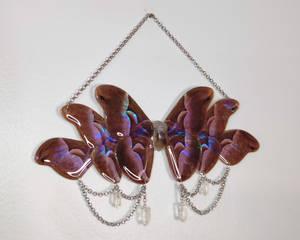 Java Silk Moth with Quartz Crystals Wall Hanging