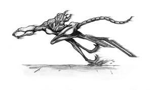 Train Sketch #9 - Knight (White)