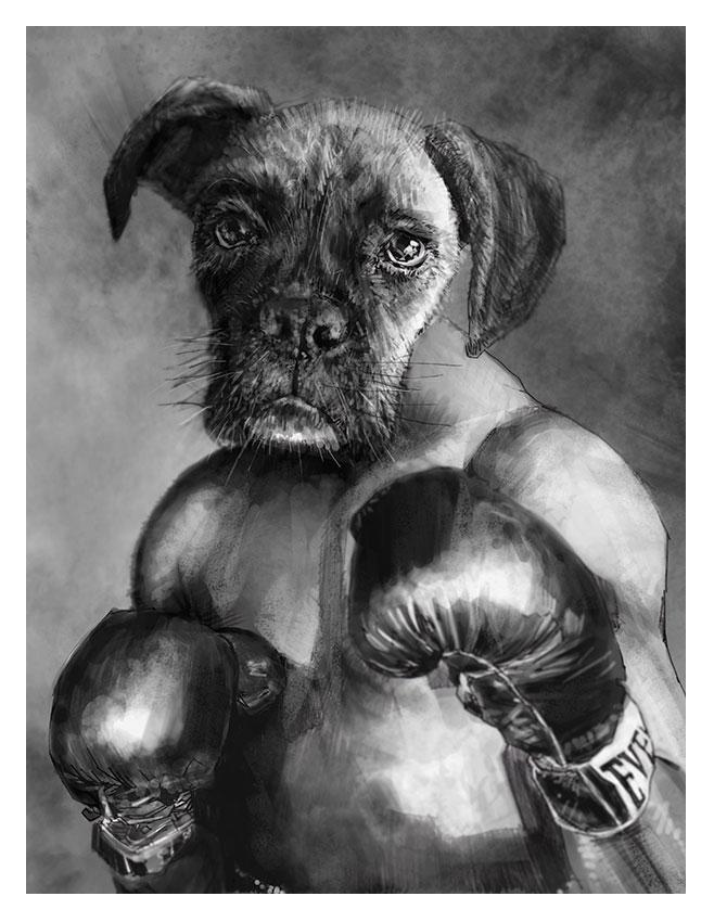 Boxer Boxer by tomasoverbai
