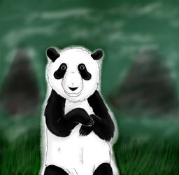 AT: Panda by Kotka-prailor