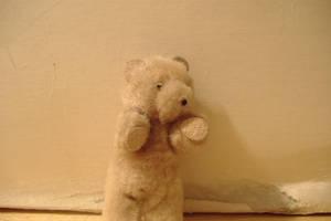 A Fuzzy Bear by PrlUnicorn