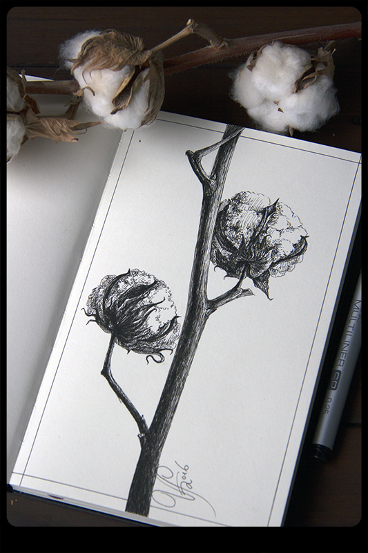 Cotton by ViKiV