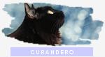 Rango clan: Curandero