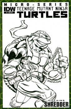 Michelangelo sketchcover