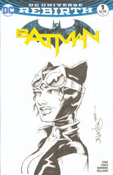 Catwoman Commission Sketchcover