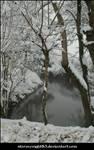 Snowy landscape 18