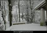 Snowy landscape 22