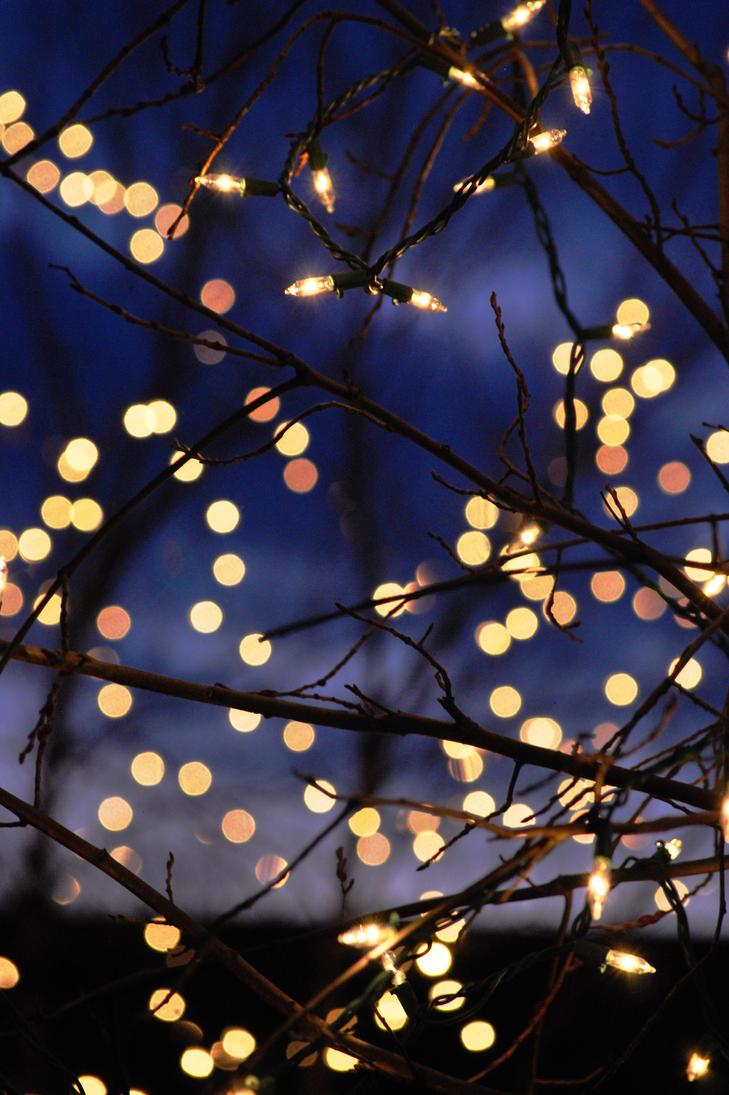 Christmas Lights By TRLPhotos ...