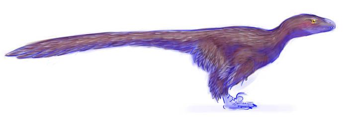 Dromaeosaur 2