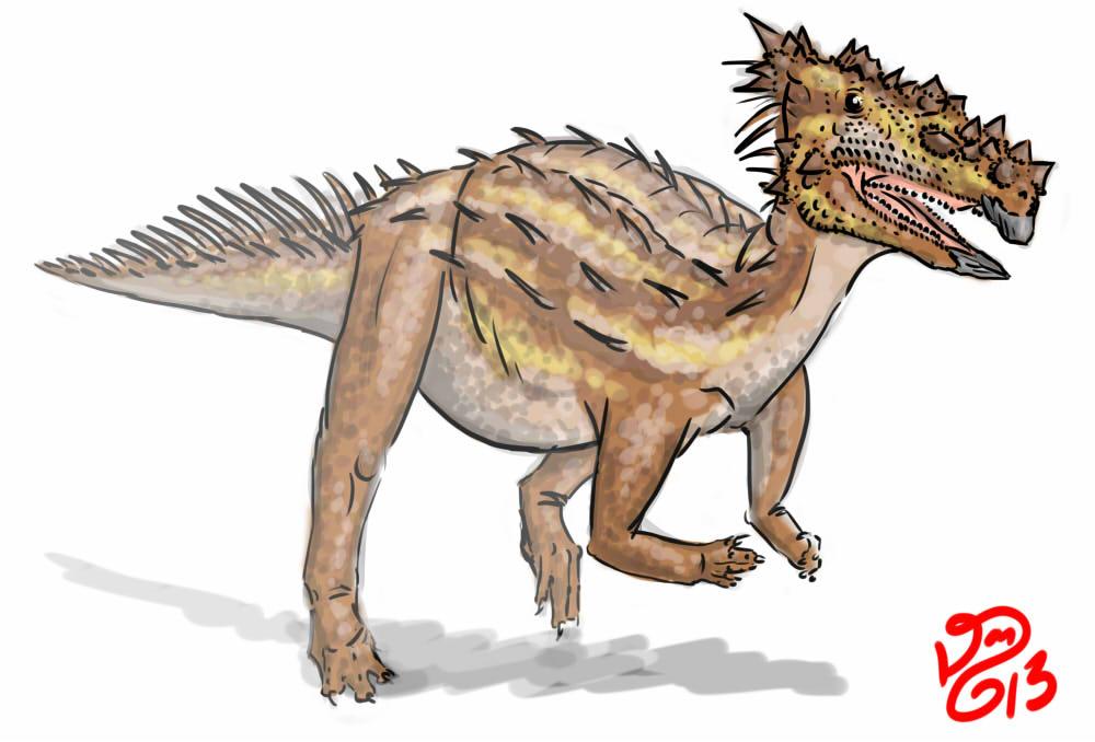 Dracorex hogwartsia by bensen-daniel