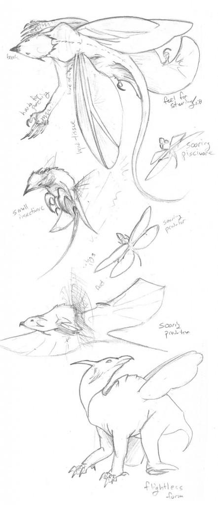 Dragons by bensen-daniel