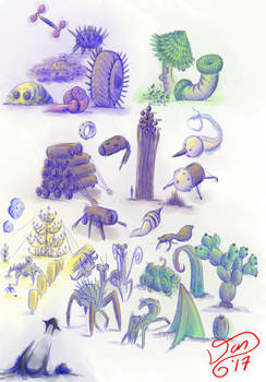 Biomes of Junction