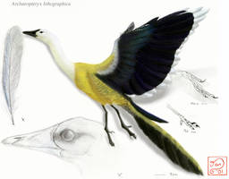 Archaeopteryx lithographica by bensen-daniel