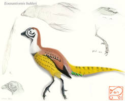 Eoenantiornis buhleri by bensen-daniel