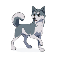 Gin |Ginga Nagareboshi Gin| by BlackOutlet