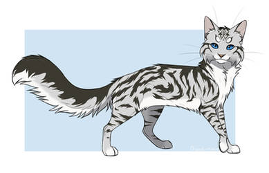 Feathertail |Redraw| by BlackOutlet