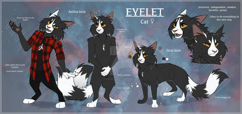 Eyelet reference 2020