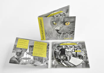 Mad Head Company - Catch It! ALBUM Artwork by Mottsei