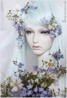 Gardenia by Sarqq