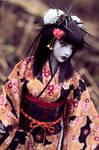 Cyber Geisha