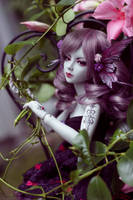 Enchanted Butterfly by Sarqq