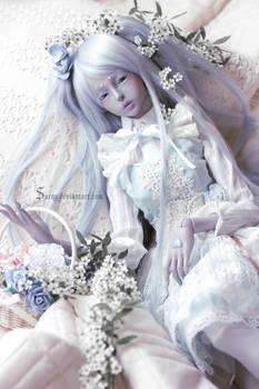 Bed of Flowers II