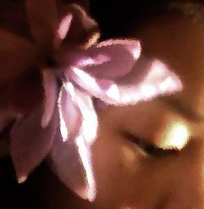 Lotus by padawanbutterfingers